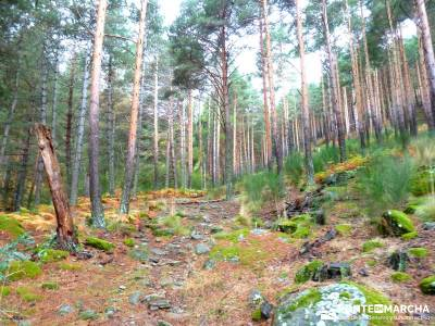 Reserva Natural del Valle de Iruelas;macizo galaico leones gr 86 charca verde la pedriza